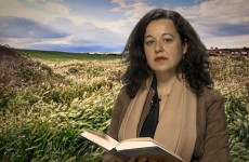 Susana Torres - The Affront