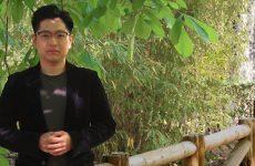 Li Zhang